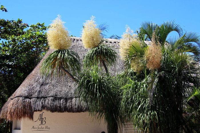 Tulum: eine Stadt an der Karibikküste