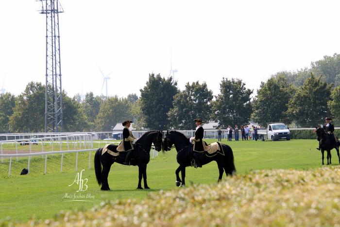 Austrian Derby by Vienna Ascot 2018
