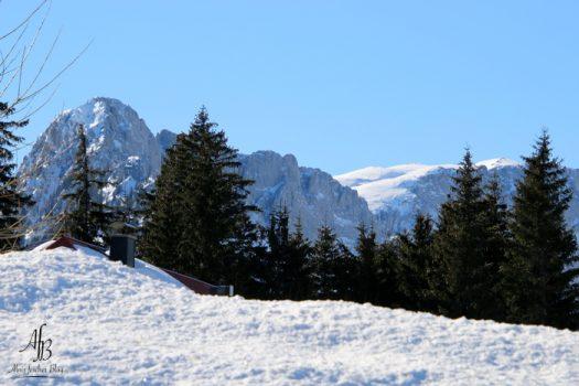 Traumhafte Wintertage am Seebergsattel in der Steiermark